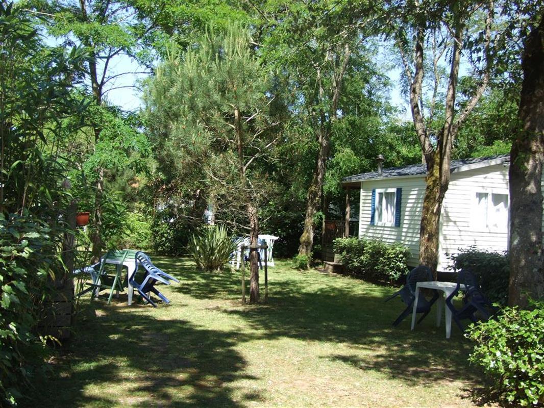 Oceanic camping oleron location de mobil home ol ron for Camping le bois joli la chambre